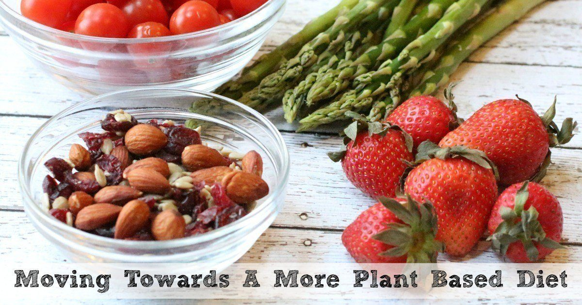 Transition to a Plant-Based Diet