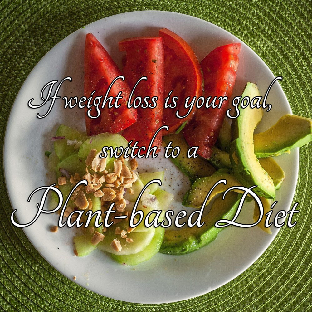 plant based diets for weight loss